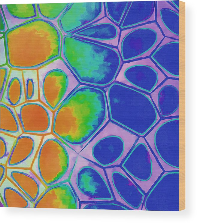 Painting Wood Print featuring the painting Cell Abstract 2 by Edward Fielding
