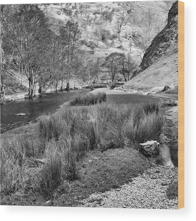 Dale Wood Print featuring the photograph Dovedale, Peak District UK by John Edwards