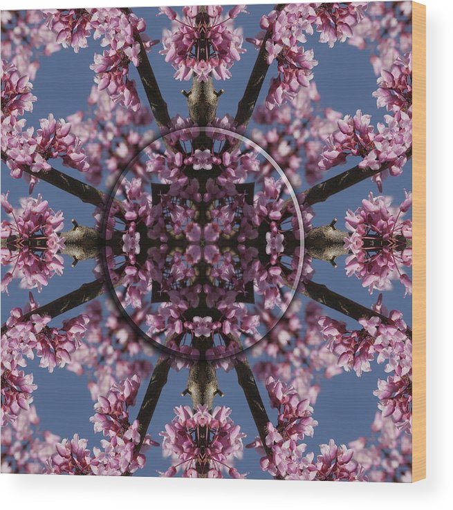 Mandala Wood Print featuring the photograph Eastern Red Bud Mandala by Alan Skonieczny