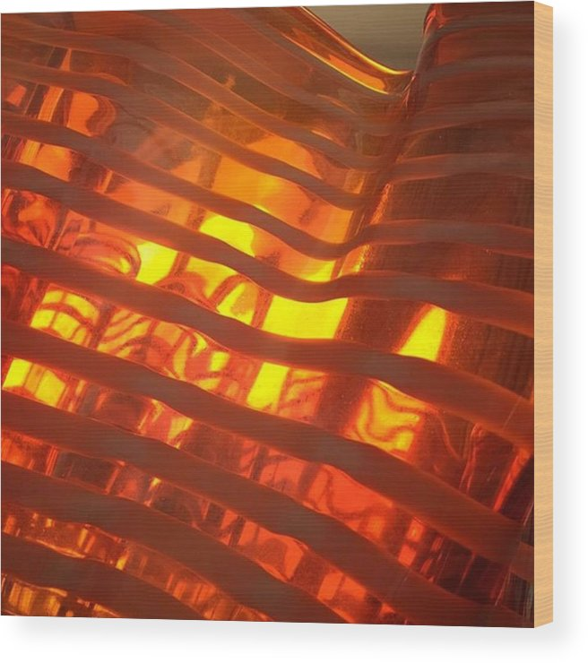 Glass Wood Print featuring the photograph Glass Vase #juansilvaphotos by Juan Silva