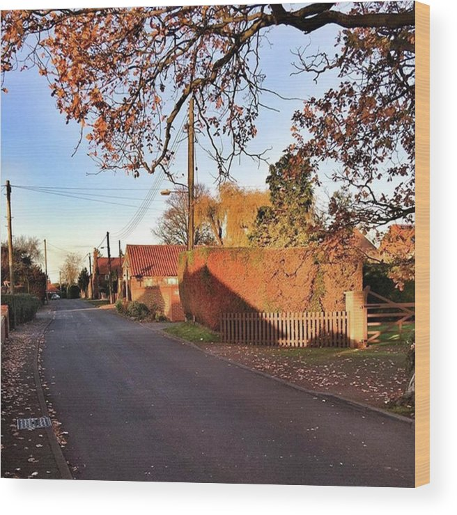 Kingslynn Wood Print featuring the photograph It Looks Like We've Found Our New Home by John Edwards