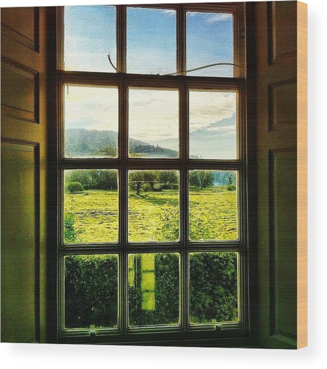 Beautiful Wood Print featuring the photograph #landscape #window #beautiful #trees by Samuel Gunnell