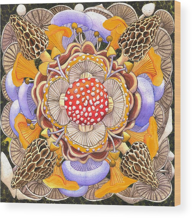 Mushrooms Wood Print featuring the painting Mushroom Mandala by Catherine G McElroy