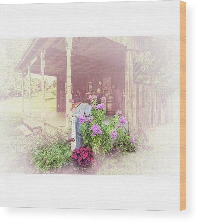 Ruralphotography Wood Print featuring the photograph Pump With Flowers brazeau by Larry Braun