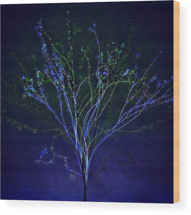 Augustine Wood Print featuring the photograph Since Love Grows Within You by Nick Heap