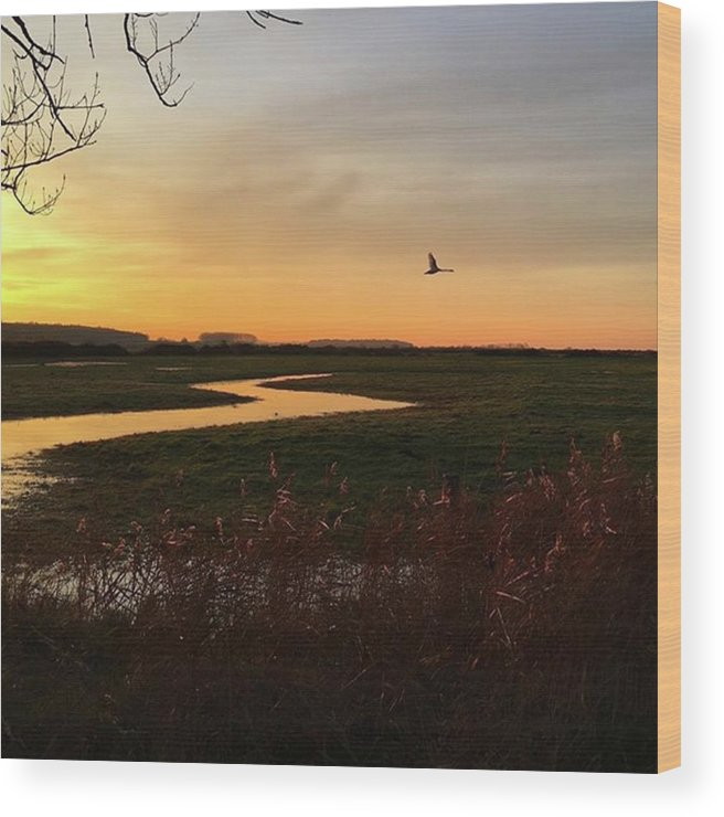 Natureonly Wood Print featuring the photograph Sunset At Holkham Today  #landscape by John Edwards