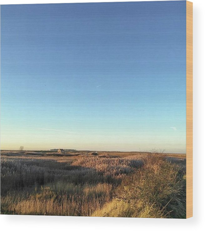 Natureonly Wood Print featuring the photograph Thornham Marsh Lit By The Setting Sun by John Edwards