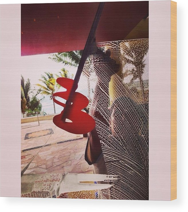Wood Print featuring the photograph Woman Cleaning Glass Door, Riviera by Juan Silva