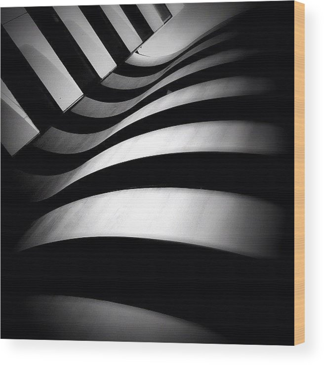Blackandwhite Wood Print featuring the photograph Zebra City - Concrete Jungle by Robbert Ter Weijden