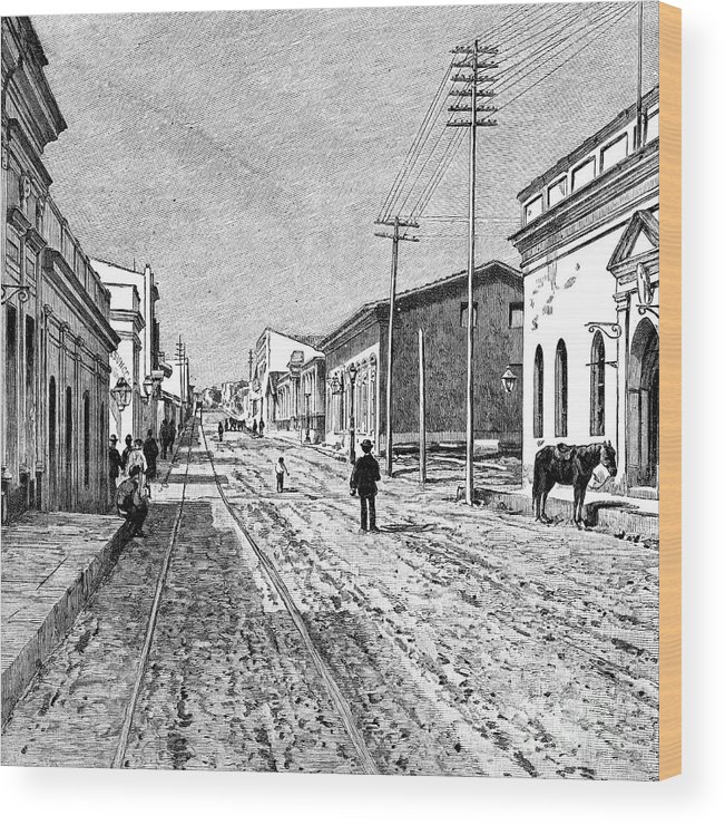Engraving Wood Print featuring the drawing Asuncion, Paraguay, 1895 by Print Collector