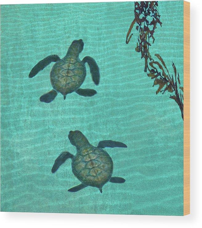 Seaweed Wood Print featuring the photograph Baby Sea Turtles by Melinda Moore