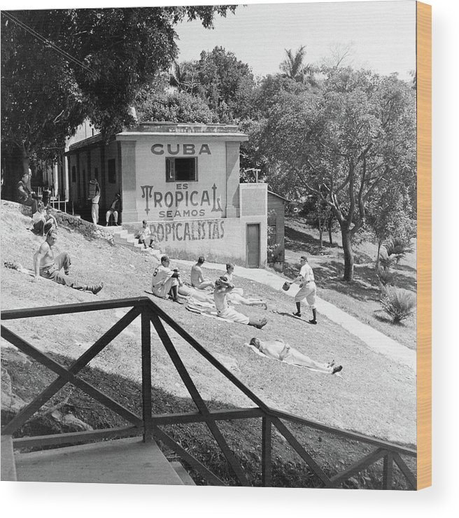 Timeincown Wood Print featuring the photograph Dodgers Spring Training by William Vandivert