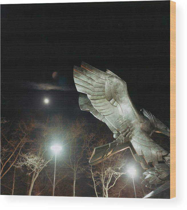 Battery Park Wood Print featuring the photograph Eagle Statue by Silvia Otte