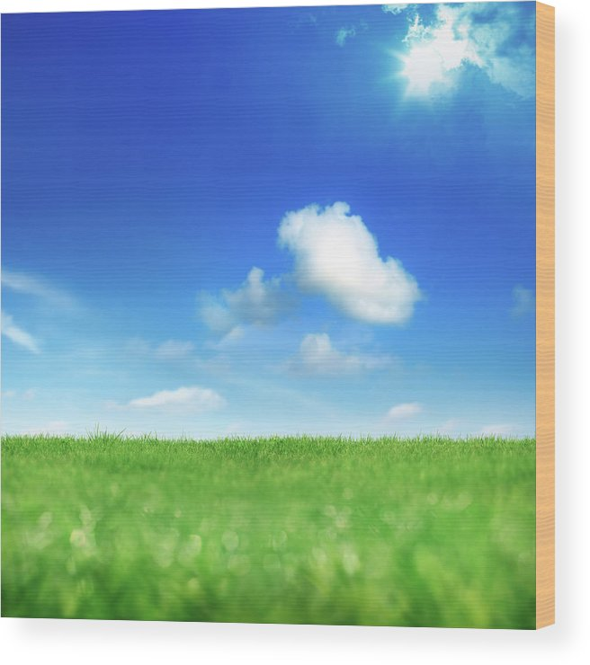 Scenics Wood Print featuring the photograph Green And Blue by Imagedepotpro