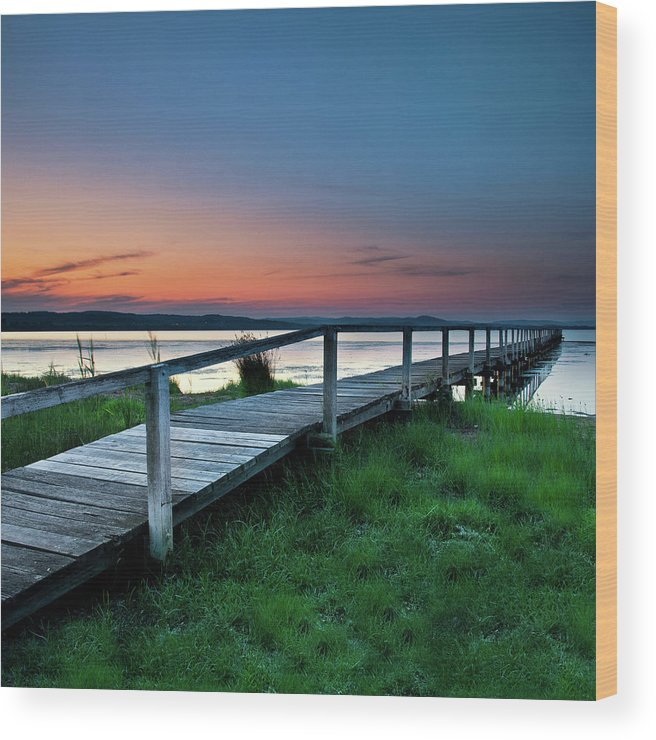 Tranquility Wood Print featuring the photograph Greener On The Other Side by Photography By Carlo Olegario