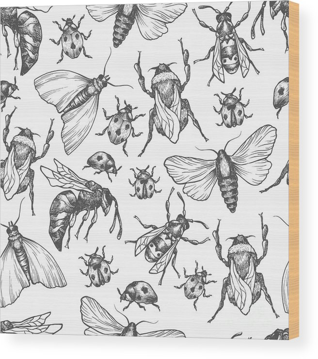 Bee Wood Print featuring the digital art Hand Drawn Vector Pattern With Insects by Olga Olmix