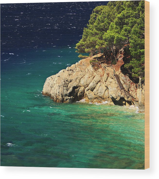 Steps Wood Print featuring the photograph Island In The Adriatic by Tozofoto