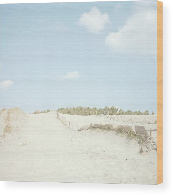 Scenics Wood Print featuring the photograph Nakatajima Sand Dunes by Haribote.nobody