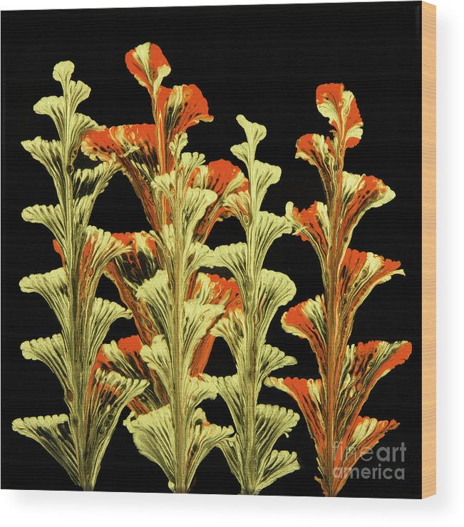 Poured Acrylics Wood Print featuring the painting Red and Gold Floral by Lucy Arnold