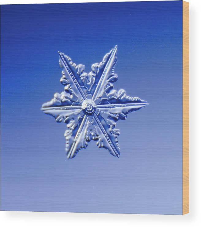 Snow Wood Print featuring the photograph Snowflake On Blue Background by Fwwidall