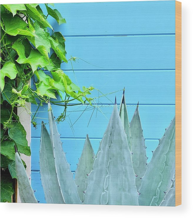 Wood Print featuring the photograph Two Plants by Julie Gebhardt