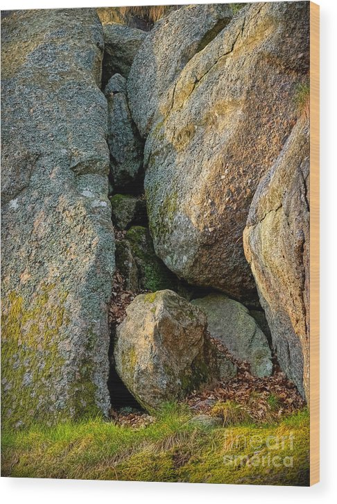 Forest Rocks Wood Print featuring the photograph Forest Rocks by Lutz Baar