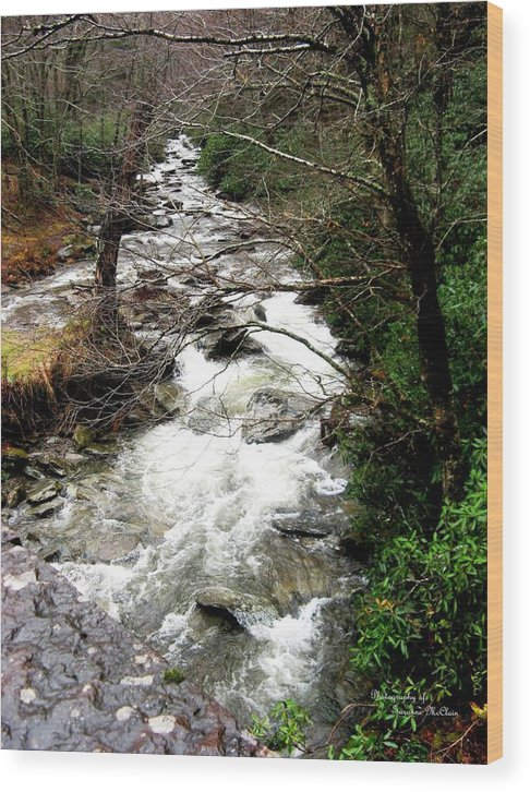Nature Prints Wood Print featuring the digital art Townsend Creek by Suzanne McClain