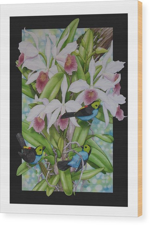 Orchids Wood Print featuring the painting Laelia Purpurata by Darren James Sturrock