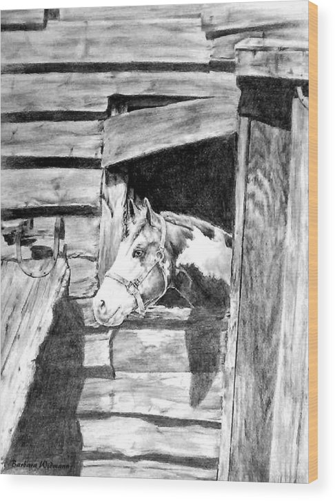 Horses Wood Print featuring the drawing Strawberry by Barbara Widmann