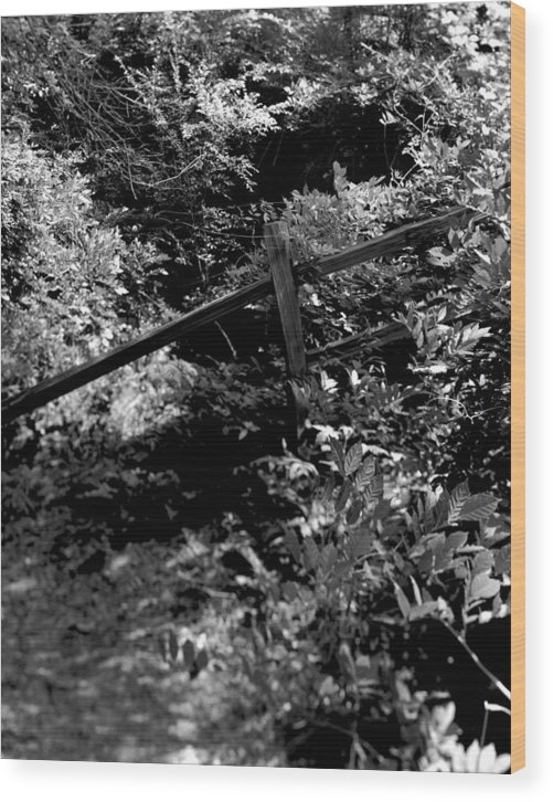 Woods Wood Print featuring the photograph The Fence by Ayesha Lakes