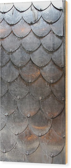 Shapes Wood Print featuring the photograph Fish Scales by Kenna Westerman