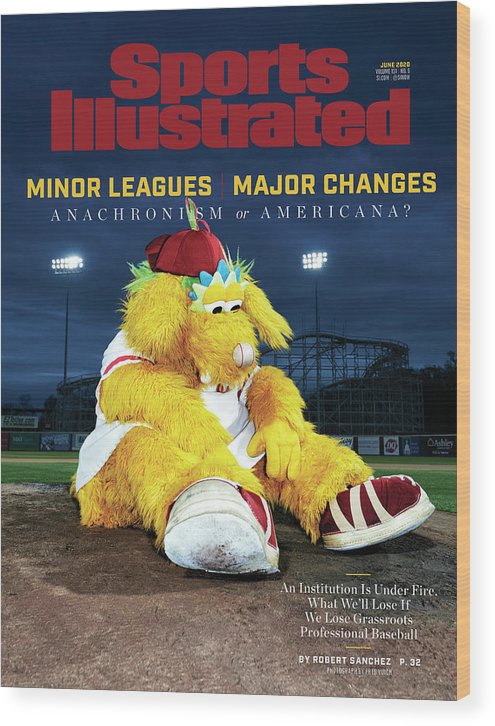 Minor League Baseball Wood Print featuring the photograph Minor Leagues Major Changes, June 2020 Sports Illustrated Cover by Sports Illustrated