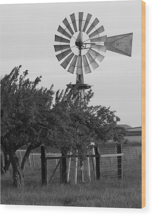 Aermotor Wood Print featuring the photograph Aermotor Windmill San Joaquin County Ca by Troy Montemayor