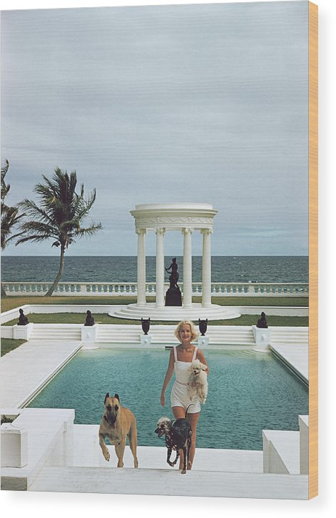 Pets Wood Print featuring the photograph Czs Dogs by Slim Aarons