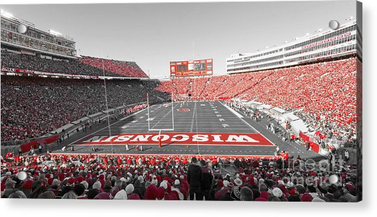 0095 Badger Football  Acrylic Print
