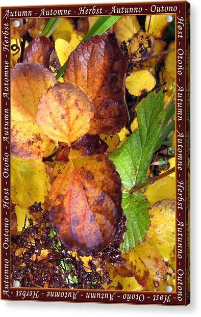 Autumn Leaves 2 Acrylic Print