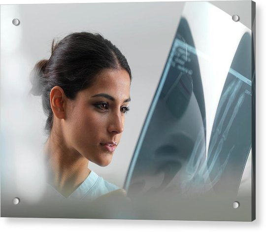 Doctor Examining An X-ray Acrylic Print
