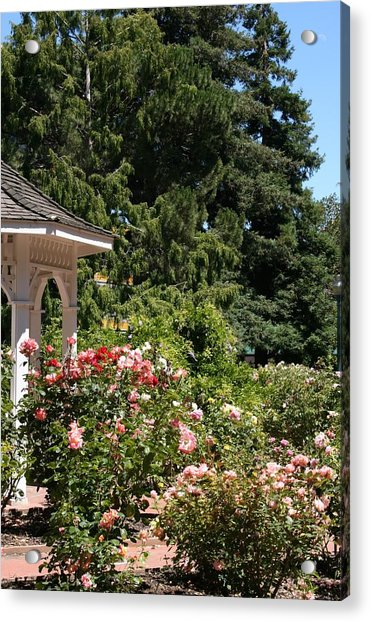 Acrylic Print featuring the photograph English Garden by Cynthia Marcopulos