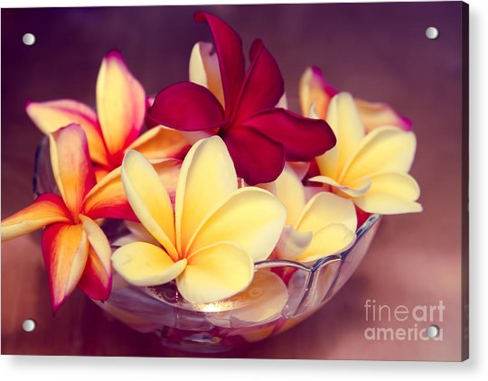 Gifts Of The Heart Acrylic Print