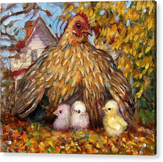 Hen And Chicks Acrylic Print