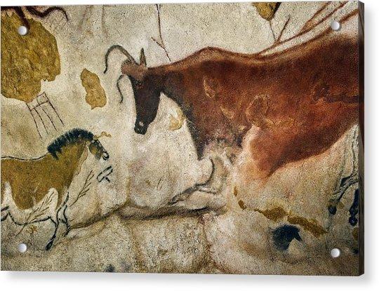 Lascaux II Cave Painting Replica Acrylic Print