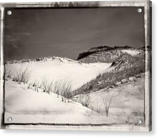 Sandy Neck Dunes Acrylic Print