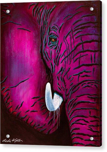 Seeing Pink Elephants Acrylic Print