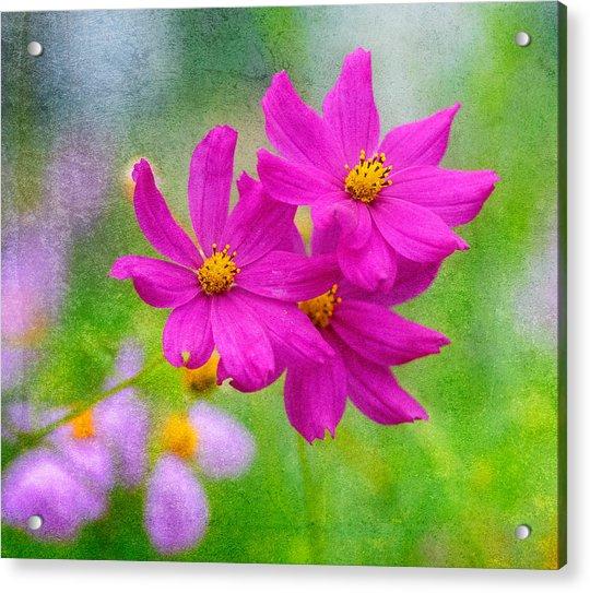 Acrylic Print featuring the photograph Summer Garden by Garvin Hunter
