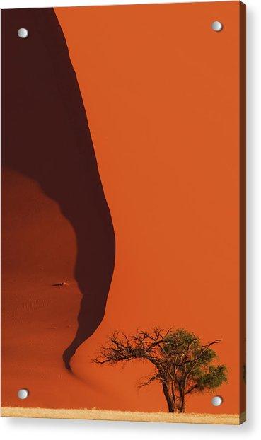 120118p072 Acrylic Print