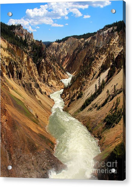 Acrylic Print featuring the photograph Grand Canyon Of Yellowstone by Jemmy Archer