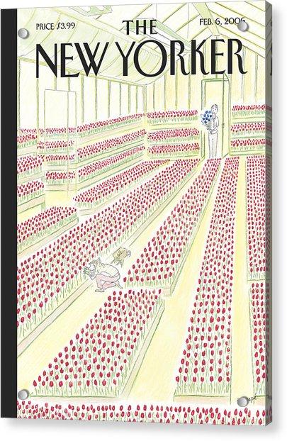 New Yorker February 6th, 2006 Acrylic Print