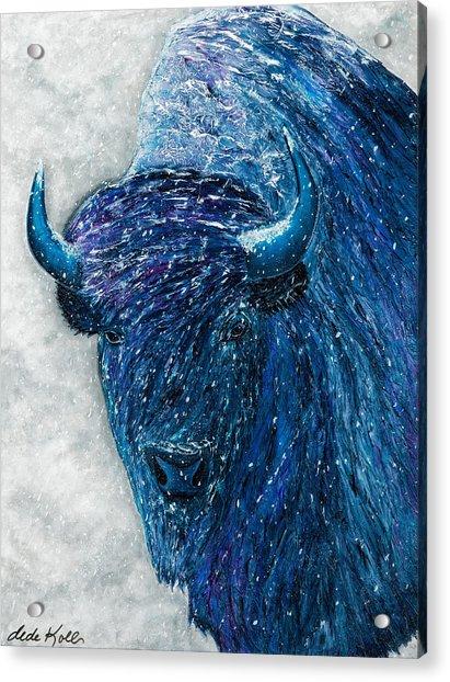 Buffalo  - Ready For Winter Acrylic Print