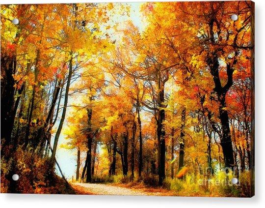 A Golden Day Acrylic Print