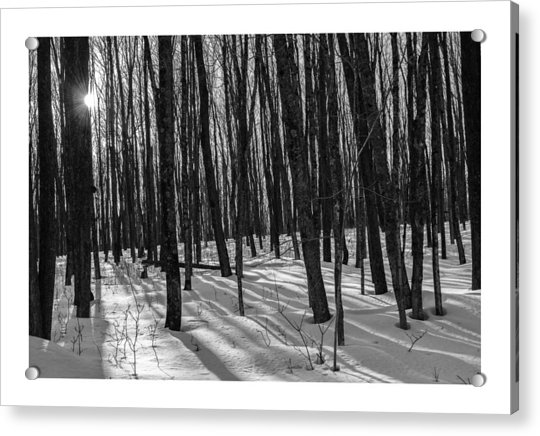 A Long Winter's Day Acrylic Print